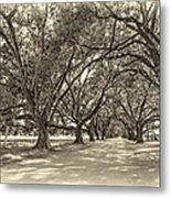 The Southern Way Sepia Metal Print by Steve Harrington
