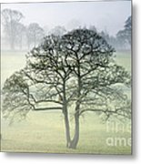The Vale Of York From Crayke Metal Print by John Potter