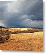 The View From The Side Of The Road Metal Print by Theresa Tahara