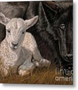 The Wolf And The Lamb Metal Print by Sheri Gordon