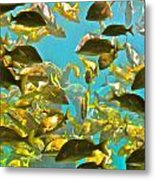 Theres Plenty Of Fish In The Sea Metal Print by Amanda Just