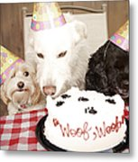 They Are Eating My Cake Metal Print by Jan Tyler