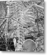 This Is Your Spinal Notice Metal Print by Betsy Knapp