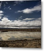 This Makes It All Worth It Metal Print by Laurie Search