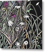 Thistle And Queen Anne Metal Print by Grace Keown