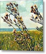 Thistles On The Beach - Oil Metal Print by Michelle Calkins