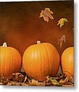 Three Pumpkins Metal Print by Amanda And Christopher Elwell