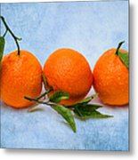Three Tangerines Metal Print by Alexander Senin