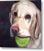 Throw The Ball Metal Print by Molly Poole