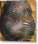 Thru The Maze Metal Print by Deborah Benoit