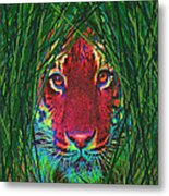 Tiger In The Grass Metal Print by Jane Schnetlage