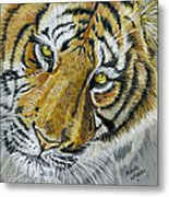 Tiger Painting Metal Print by Michelle Wrighton