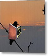 To Kill A Mockingbird Metal Print by Bill Cannon
