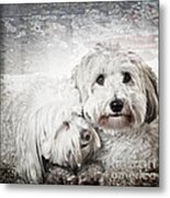 Together Metal Print by Elena Elisseeva