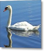 Tranquility Metal Print by Frozen in Time Fine Art Photography