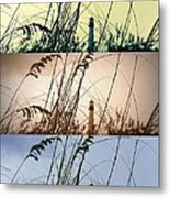 Transitions Metal Print by Laurie Perry