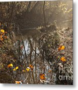 Travertine Creek In The Woods Metal Print by Iris Greenwell
