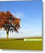 Tree And Hay Bales Metal Print by Aged Pixel