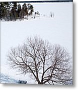 Tree And The Point In Winter Metal Print by Rob Huntley