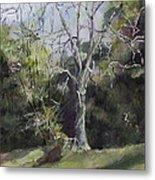 Tree Metal Print by Janet Felts