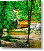 Tree Roots Metal Print by Optical Playground By MP Ray