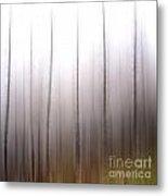 Tree Trunks Metal Print by Bernard Jaubert