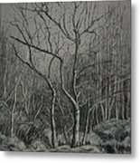 Trees Along The Greenway Metal Print by Janet Felts
