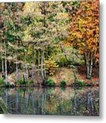 Trees In Autumn Metal Print by Natalie Kinnear