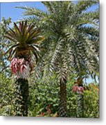 Tropical Garden Metal Print by Kim Hojnacki