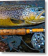 Trout On Fly Metal Print by Lina Tricocci