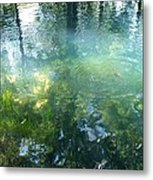 Trout Pond Metal Print by Mary Wolf