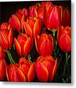 Tulip Bouquet Metal Print by Brian Xavier