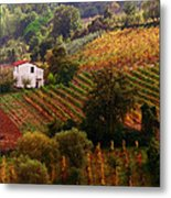 Tuscan Autumn Metal Print by John Galbo