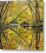 Twins Metal Print by Frozen in Time Fine Art Photography