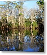 Ultimate Reflection Metal Print by Debra Forand