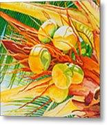 Under The Coconut Palm Metal Print by Janis Grau