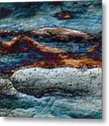 Untamed Sea 2 Metal Print by Carol Cavalaris