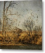 Up Up And Away Metal Print by Jeff Swanson