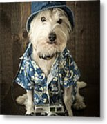 Vacation Dog Metal Print by Edward Fielding