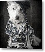 Vacation Dog With Camera And Hawaiian Shirt Metal Print by Edward Fielding