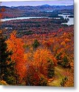 View From Mccauley Mountain II Metal Print by David Patterson