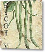 Vintage Vegetables 2 Metal Print by Debbie DeWitt