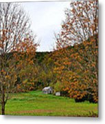 Virginia Fall Metal Print by Todd Hostetter