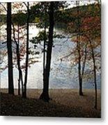 Walden Pond In Autumn Metal Print by Sheila Savage