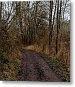 Wapato State Access Area Metal Print by Sara Edens