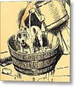 Washed By Mary - A Dog Day Collection 4 Of 27 Metal Print by Cecil Aldin