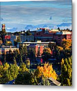 Washington State University In Autumn Metal Print by David Patterson