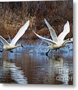 Water Dance Metal Print by Mike  Dawson