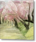 Watercolor Painting Of Cherry Blossom Trees In Central Park Nyc Metal Print by Beverly Brown Prints