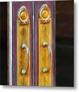 Welcome Back Carter Metal Print by Brenda Bryant